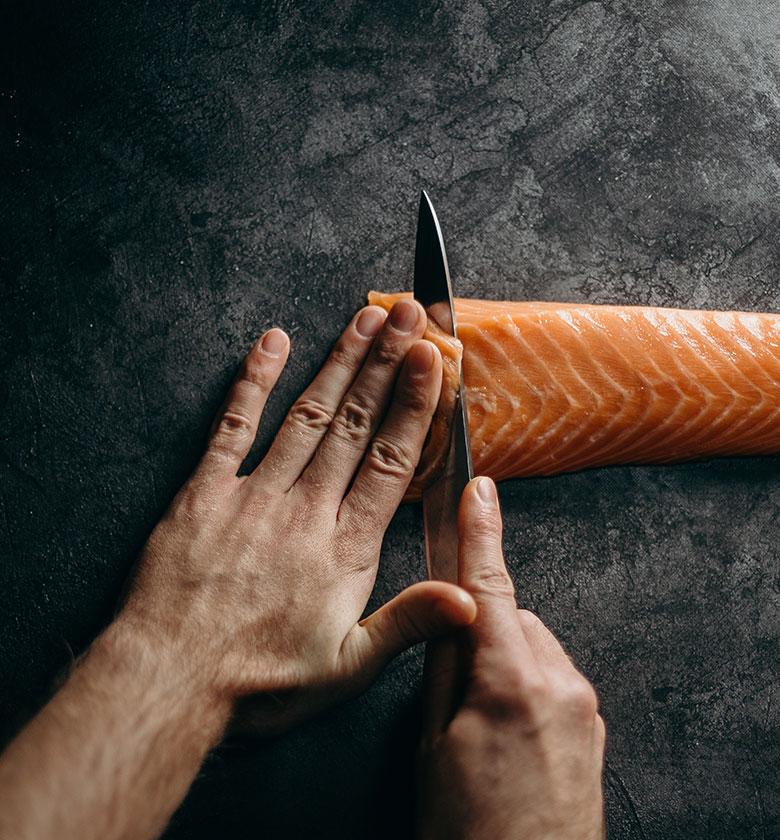 salmon-kontakt